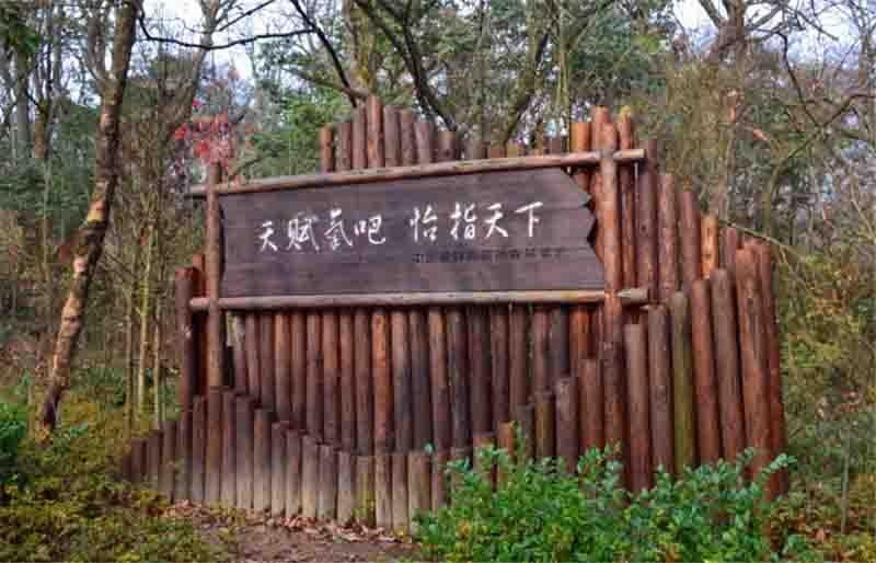咸丰坪坝营