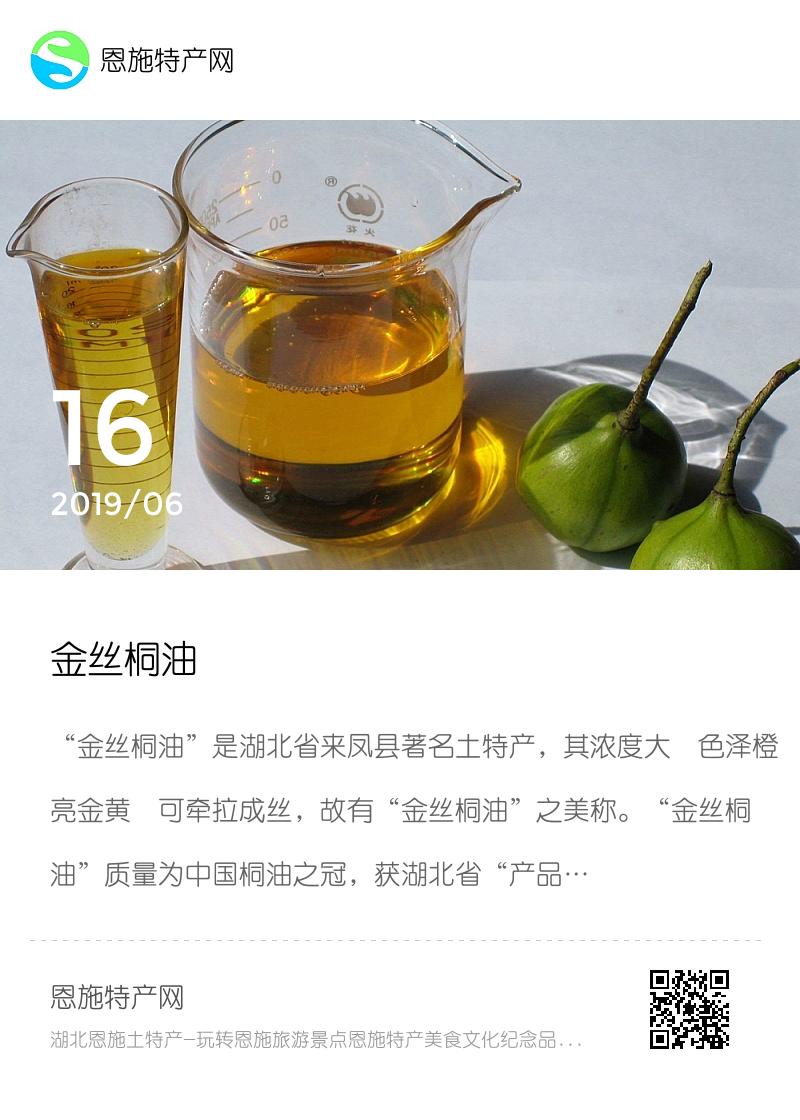 金丝桐油分享封面