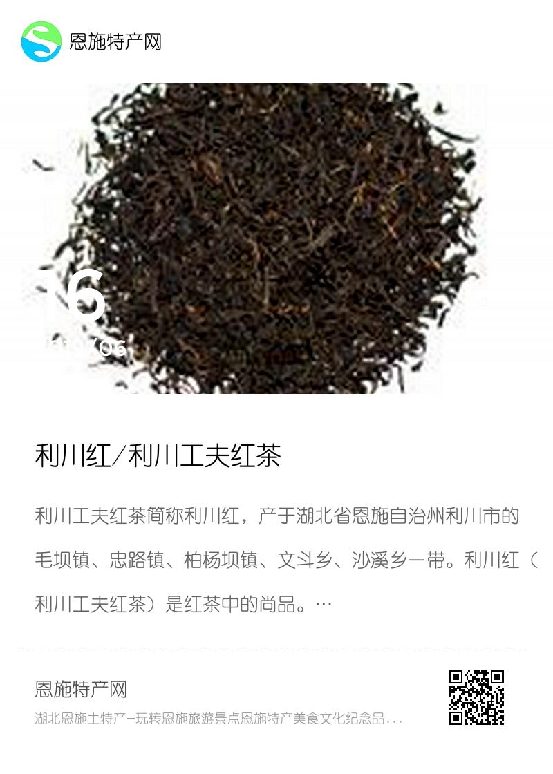 利川红/利川工夫红茶分享封面