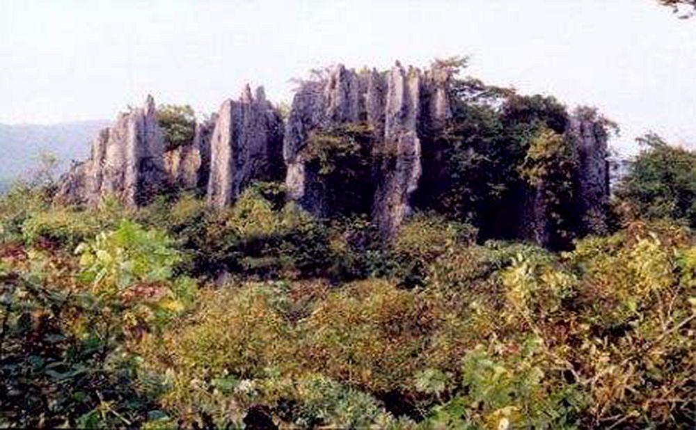 锣鼓圈岩溶石林